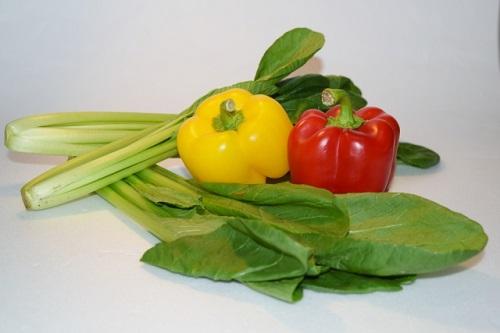 家庭菜園 初心者におすすめの野菜 小松菜の育て方!